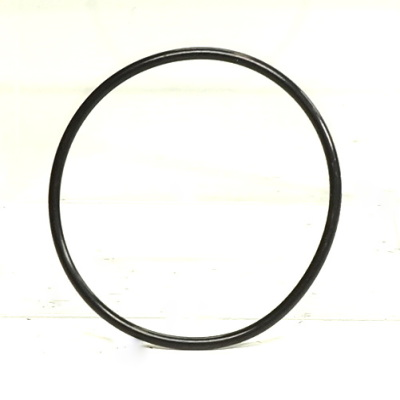 Engine Coolant Thermostat O-Ring-OES